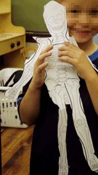 travskeleton